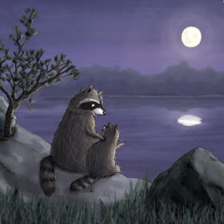 Raccoons looking at moon