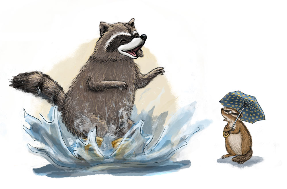 Raccoon and chipmunk splash in puddle